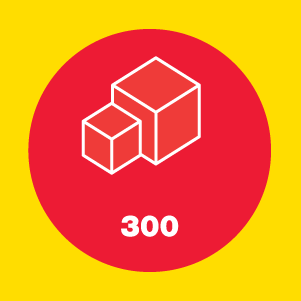 box300