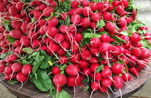 christmas traditions around the world including Mexican radish festival