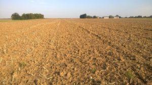 Ploughed field in Suffolk